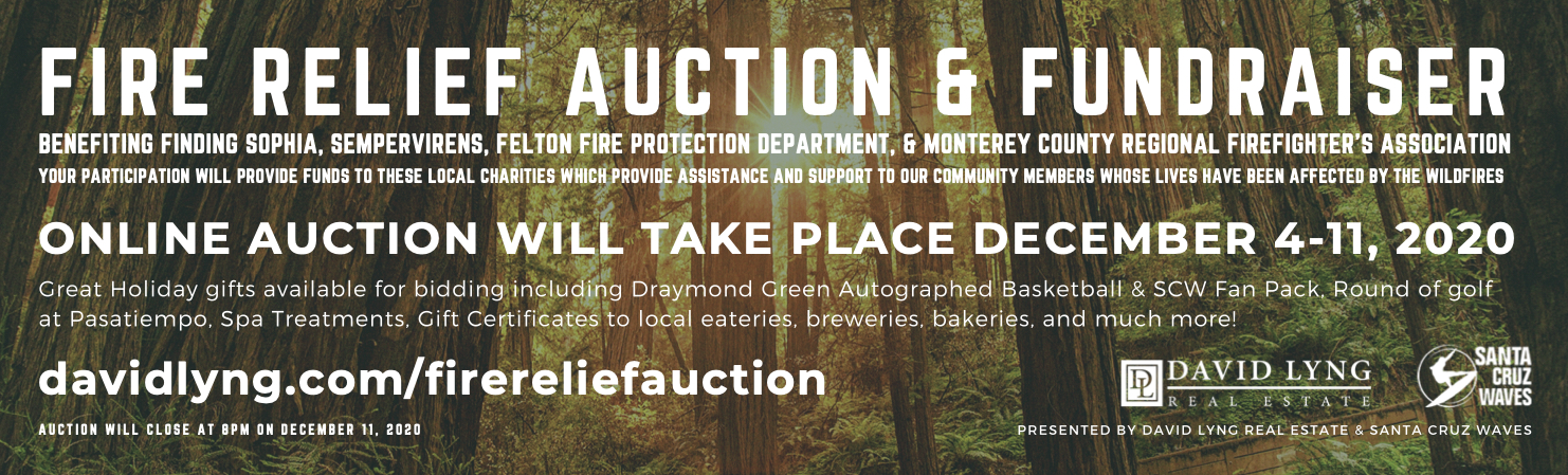 FIRE RELIEF AUCTION - SENTINEL - 9.889X3